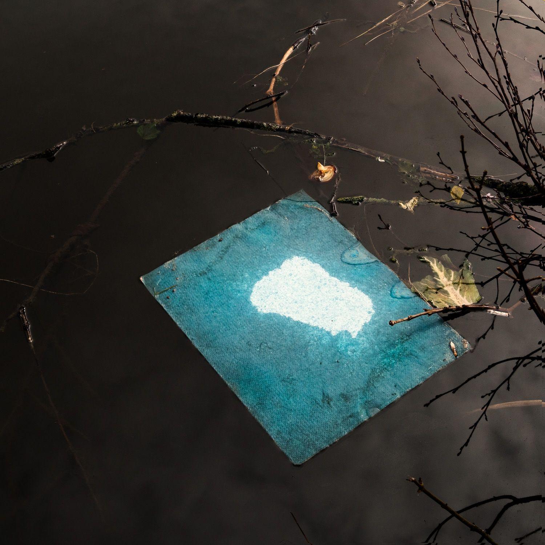 Dish cloth detritus, near Silsden